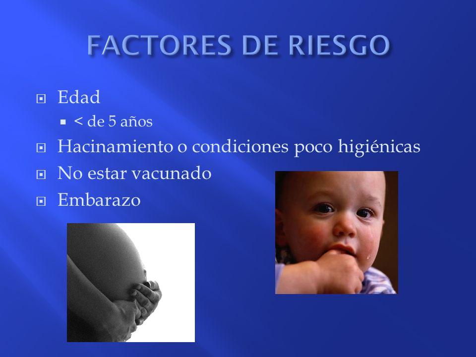 Síndrome coqueluchoide y tos ferina: situación actual de la vigilancia epidemiológica Acta Pediatr Méx 2005; 26(5) : 257-269