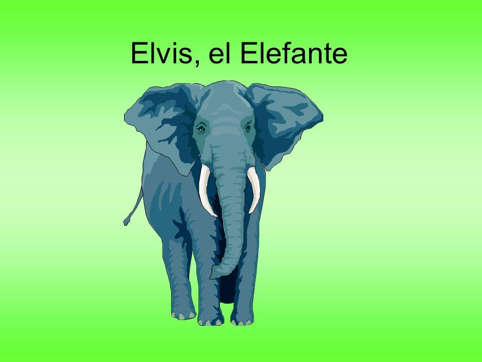 Elvis, el Elefante