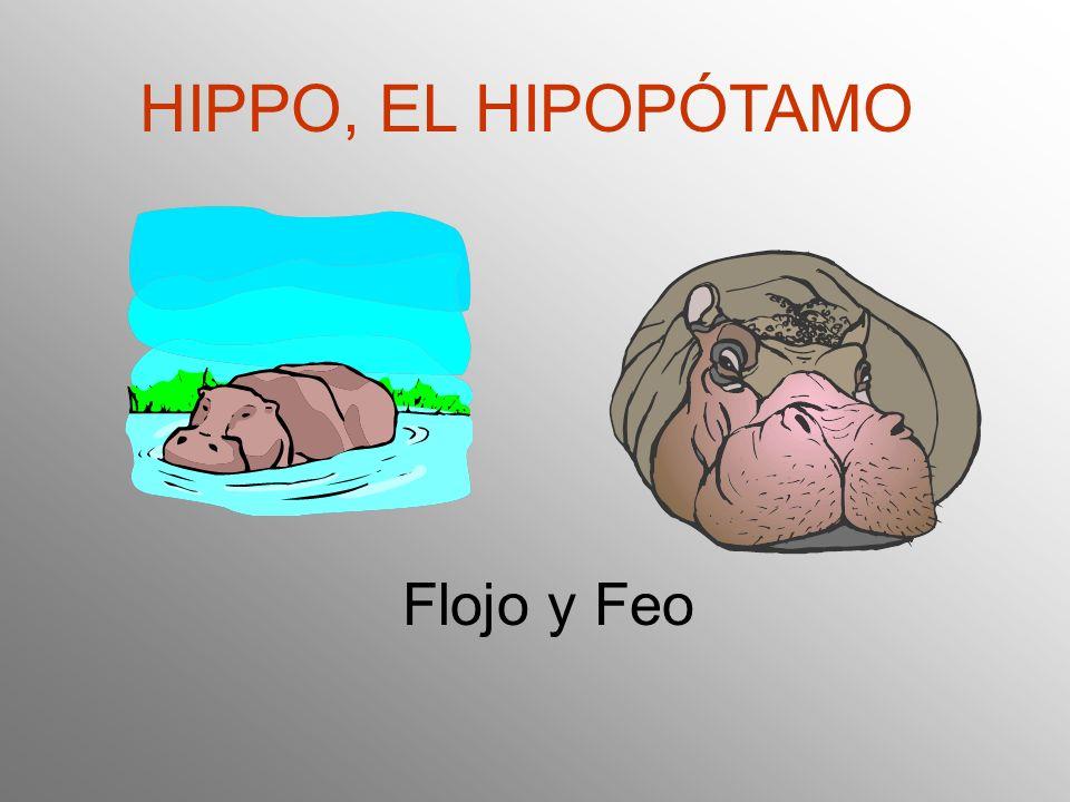 HIPPO, EL HIPOPÓTAMO Flojo y Feo