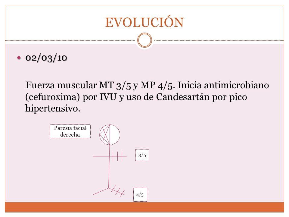 EVOLUCIÓN 02/03/10 02/03/10 Fuerza muscular MT 3/5 y MP 4/5. Inicia antimicrobiano (cefuroxima) por IVU y uso de Candesartán por pico hipertensivo. Pa