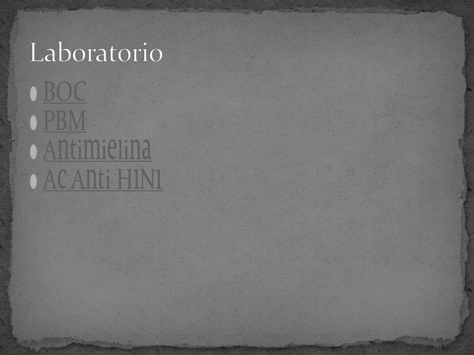 BOC PBM Antimielina Ac Anti H1N1