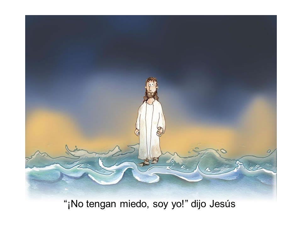 -Señor, si eres tú le dijo Pedro, -mándame que vaya a ti sobre el agua. -Ven, dijo Jesús.