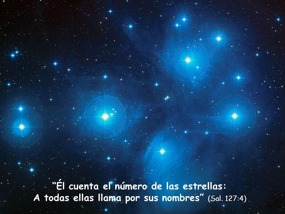 Los cielos cuentan la gloria de Dios, y la expansión denuncia la obra de sus manos (Sal. 19:1)