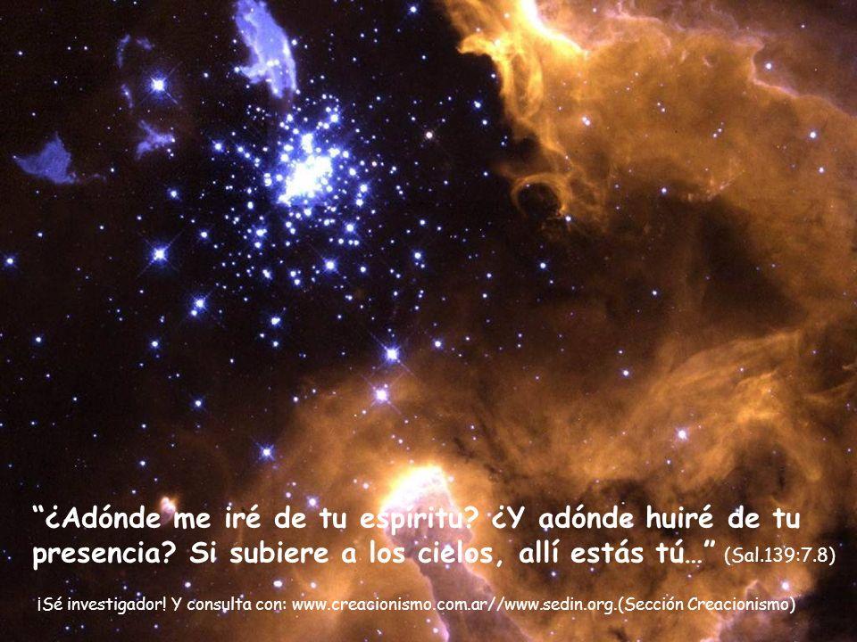 Él cuenta el número de las estrellas: A todas ellas llama por sus nombres (Sal. 127:4)