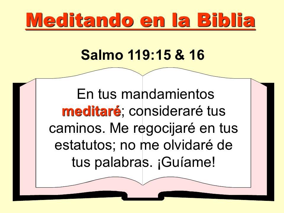 meditaré En tus mandamientos meditaré; consideraré tus caminos. Me regocijaré en tus estatutos; no me olvidaré de tus palabras. ¡Guíame! Salmo 119:15