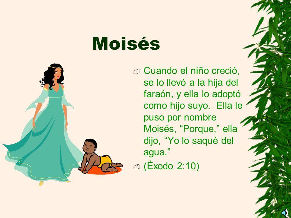 Moisés Cuando el niño creció, se lo llevó a la hija del faraón, y ella lo adoptó como hijo suyo.