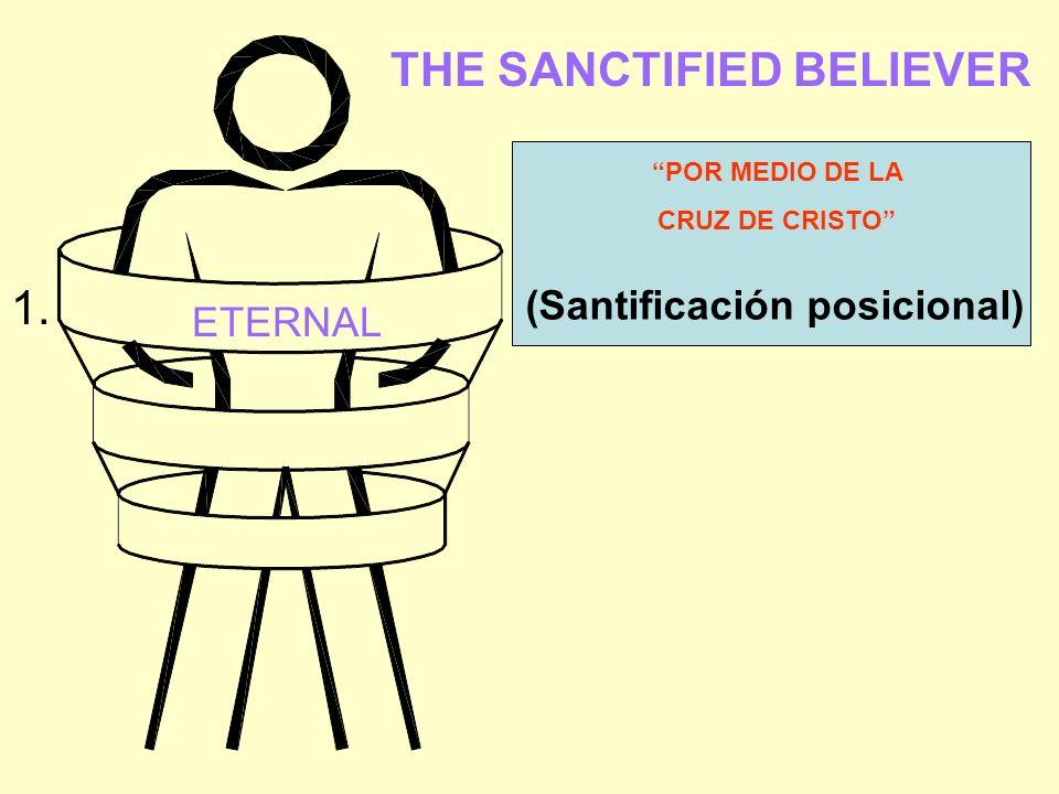THE SANCTIFIED BELIEVER ETERNAL (Santificación posicional) POR MEDIO DE LA CRUZ DE CRISTO 1.
