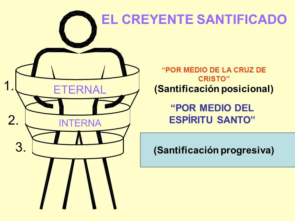 EL CREYENTE SANTIFICADO ETERNAL INTERNA (Santificación posicional) (Santificación progresiva) POR MEDIO DE LA CRUZ DE CRISTO POR MEDIO DEL ESPÍRITU SA