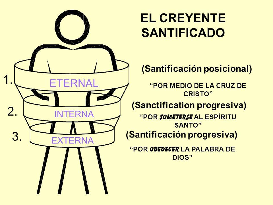 EL CREYENTE SANTIFICADO ETERNAL INTERNA EXTERNA (Santificación posicional) (Sanctification progresiva) (Santificación progresiva) POR MEDIO DE LA CRUZ