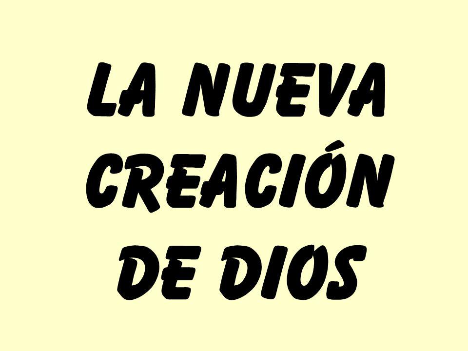 TODO HA SIDO HECHO NUEVO JESÚS MURIÓ POR MI SENDERO DE LA VIDA VIEJA SENDERO DE LA NUEVO VIDA UNCAMINOUNCAMINOUNCAMINOUNCAMINO ¡NO VUELVO ATRÁS NATURALEZA MENTE DESEOS HACIA DIOS HACIA EL HOMBRE Filipenses 2:13 querEr hacer …porque Dios es el que en vosotros produce así el querEr como el hacer, de su buena voluntad.
