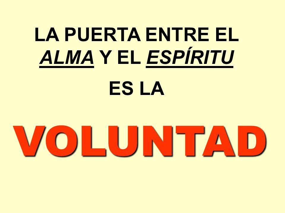 LA PUERTA ENTRE EL ALMA Y EL ESPÍRITU ES LA VOLUNTAD