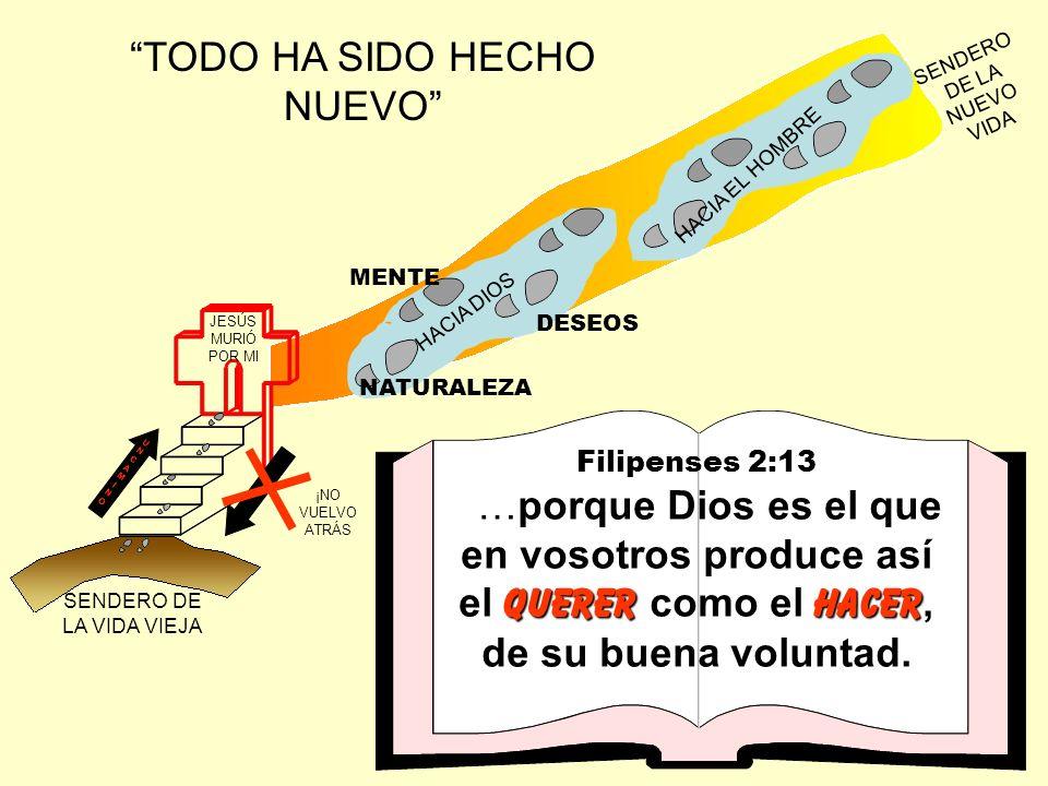 TODO HA SIDO HECHO NUEVO JESÚS MURIÓ POR MI SENDERO DE LA VIDA VIEJA SENDERO DE LA NUEVO VIDA UNCAMINOUNCAMINOUNCAMINOUNCAMINO ¡NO VUELVO ATRÁS NATURA