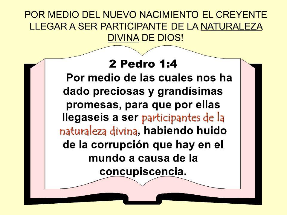 POR MEDIO DEL NUEVO NACIMIENTO EL CREYENTE LLEGAR A SER PARTICIPANTE DE LA NATURALEZA DIVINA DE DIOS! 2 Pedro 1:4 participantes de la naturaleza divin