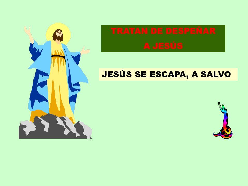TRATAN DE DESPEÑAR A JESÚS JESÚS SE ESCAPA, A SALVO