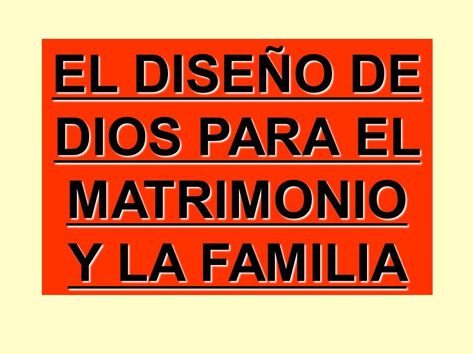 HOMBRE MUJER HIJOS DIOS ¡ DISEÑADA POR DIOS! PADRE MADRE FAMILIA