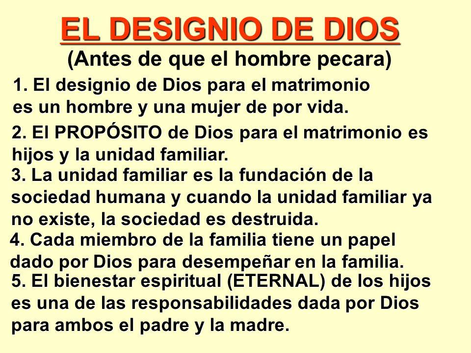 EL DESIGNIO DE DIOS (Antes de que el hombre pecara) 2.