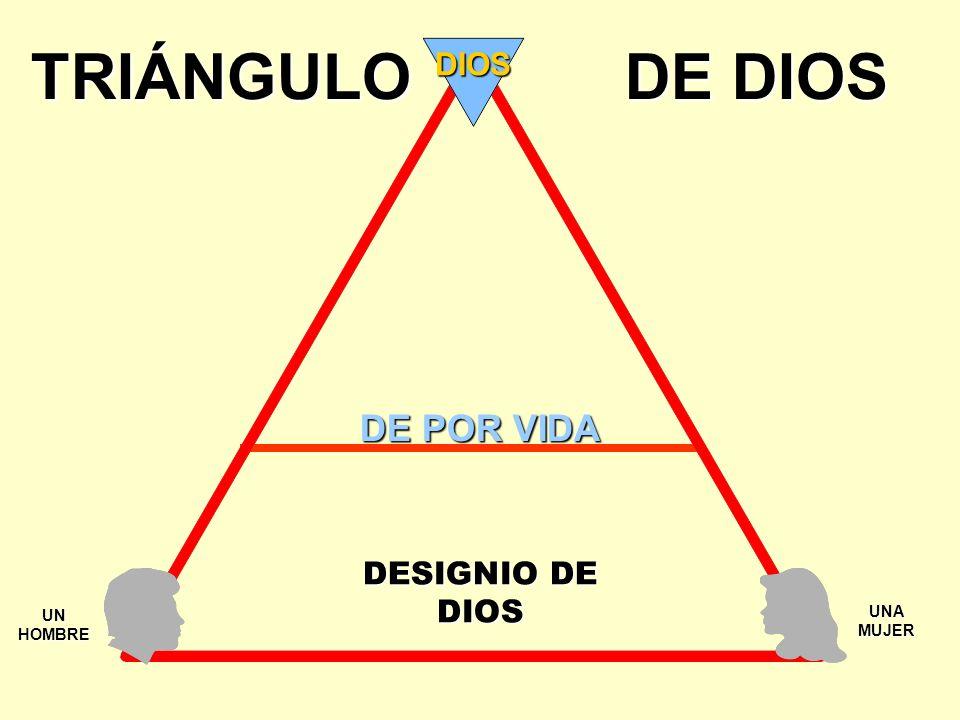 ¡LA VISTA Y LA PRÁCTICA DEL MUNDO ACERCA DEL SEXO Y EL MATRIMONIO!