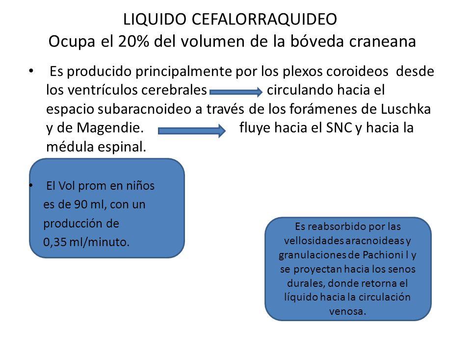 LIQUIDO CEFALORRAQUIDEO Ocupa el 20% del volumen de la bóveda craneana Es producido principalmente por los plexos coroideos desde los ventrículos cere