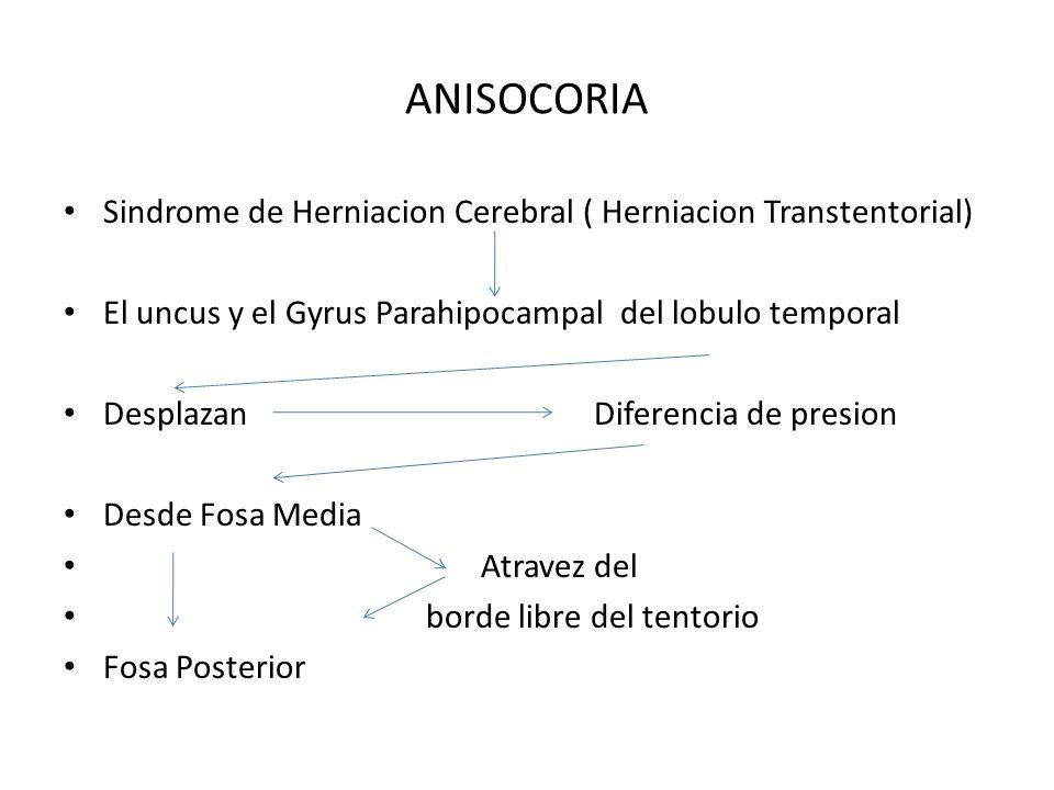 ANISOCORIA Sindrome de Herniacion Cerebral ( Herniacion Transtentorial) El uncus y el Gyrus Parahipocampal del lobulo temporal Desplazan Diferencia de
