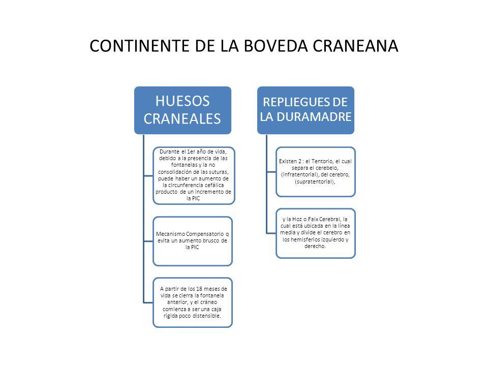 CONTINENTE DE LA BOVEDA CRANEANA HUESOS CRANEALES Durante el 1er año de vida, debido a la presencia de las fontanelas y la no consolidación de las sut