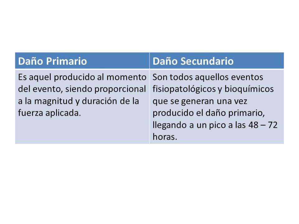 Daño PrimarioDaño Secundario Es aquel producido al momento del evento, siendo proporcional a la magnitud y duración de la fuerza aplicada. Son todos a