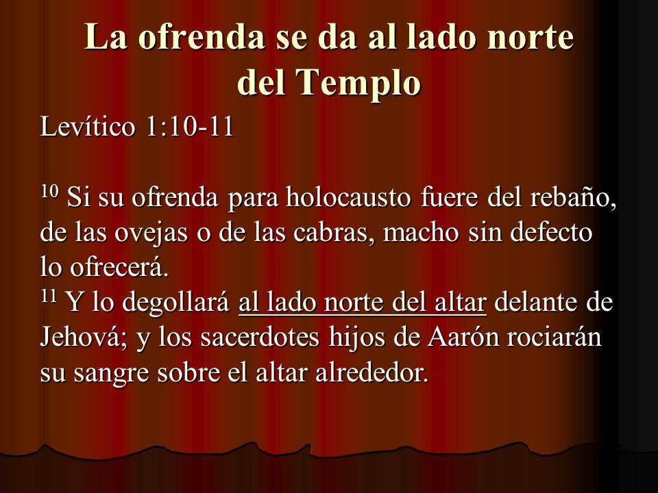 La ofrenda se da al lado norte del Templo Levítico 1:10-11 Levítico 1:10-11 10 Si su ofrenda para holocausto fuere del rebaño, de las ovejas o de las cabras, macho sin defecto lo ofrecerá.