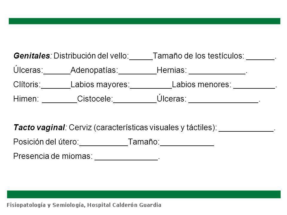 Genitales: Distribución del vello: Tamaño de los testículos:. Úlceras:Adenopatías:Hernias:. Clítoris:Labios mayores: Labios menores:. Himen: Cistocele