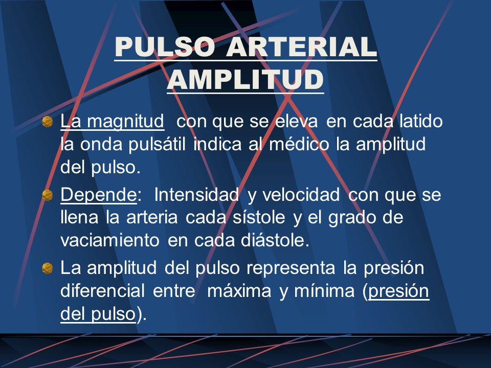 PULSO ARTERIAL AMPLITUD La magnitud con que se eleva en cada latido la onda pulsátil indica al médico la amplitud del pulso. Depende: Intensidad y vel