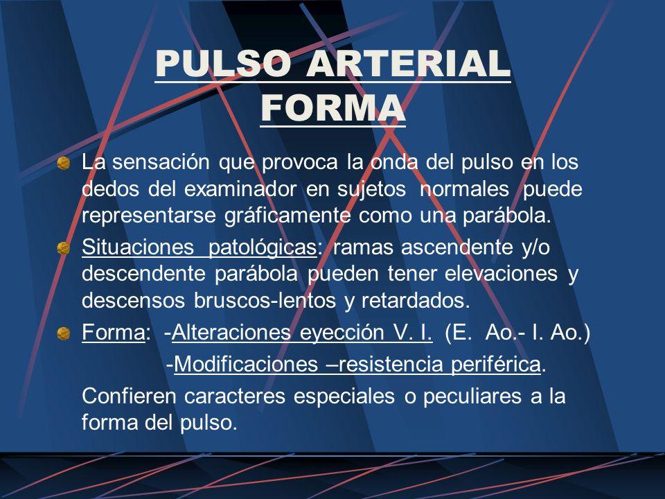 PULSO ARTERIAL FORMA La sensación que provoca la onda del pulso en los dedos del examinador en sujetos normales puede representarse gráficamente como