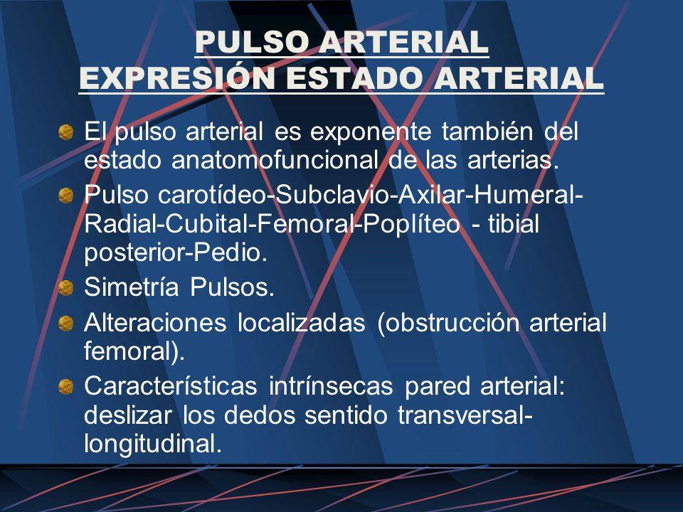 PULSO ARTERIAL EXPRESIÓN ESTADO ARTERIAL El pulso arterial es exponente también del estado anatomofuncional de las arterias. Pulso carotídeo-Subclavio
