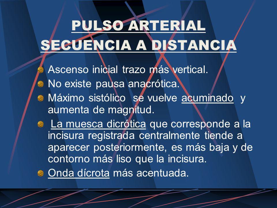 PULSO ARTERIAL SECUENCIA A DISTANCIA Ascenso inicial trazo más vertical. No existe pausa anacrótica. Máximo sistólico se vuelve acuminado y aumenta de