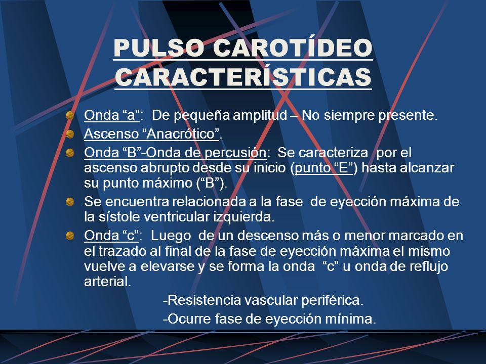 PULSO CAROTÍDEO CARACTERÍSTICAS Onda a: De pequeña amplitud – No siempre presente. Ascenso Anacrótico. Onda B-Onda de percusión: Se caracteriza por el