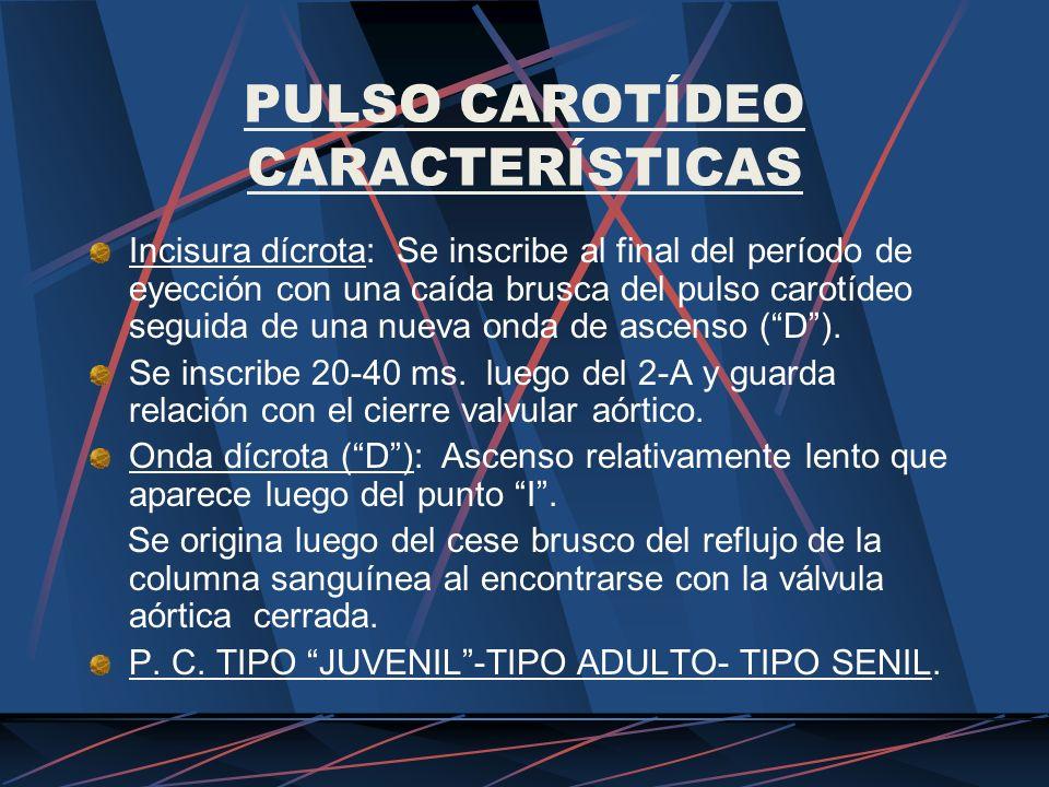 PULSO CAROTÍDEO CARACTERÍSTICAS Incisura dícrota: Se inscribe al final del período de eyección con una caída brusca del pulso carotídeo seguida de una