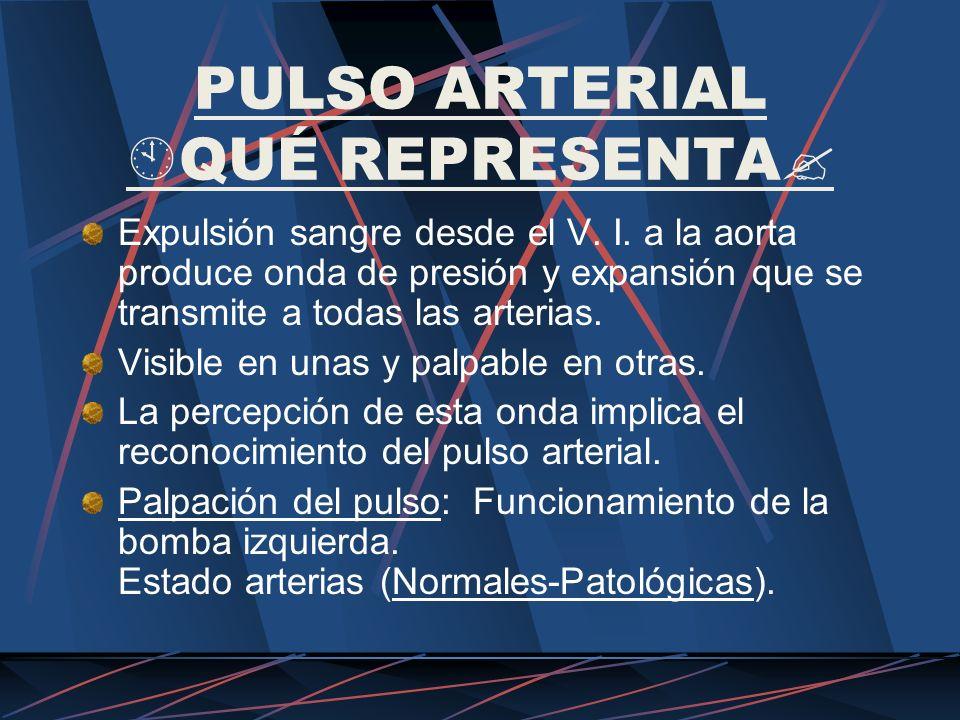 PULSO ARTERIAL QUÉ REPRESENTA Expulsión sangre desde el V. I. a la aorta produce onda de presión y expansión que se transmite a todas las arterias. Vi
