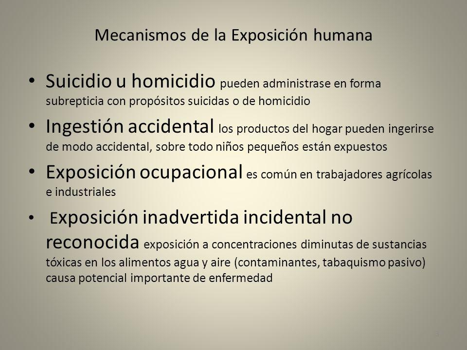 Mecanismos de la Exposición humana Suicidio u homicidio pueden administrase en forma subrepticia con propósitos suicidas o de homicidio Ingestión acci