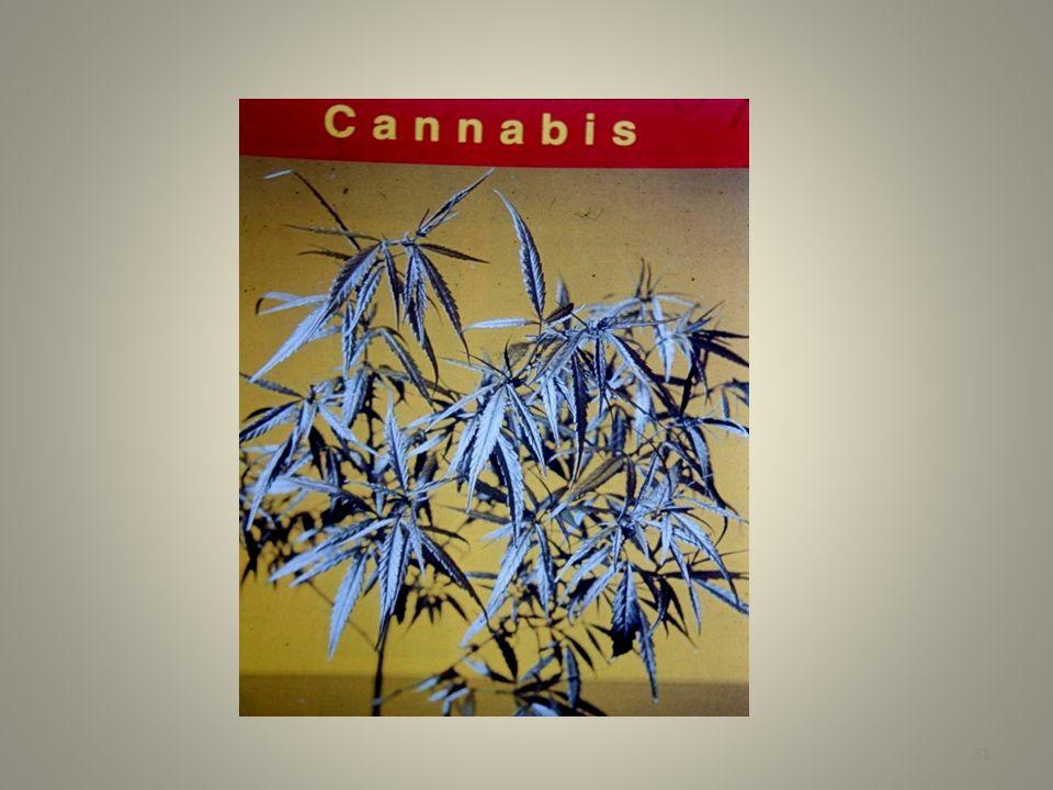 Agentes terapéuticos -fármacos Ningún fármaco está libre de efectos adversos Relacionados con la dosis - dosis terapéutica debe titularse contra cualquier efecto tóxico, p.