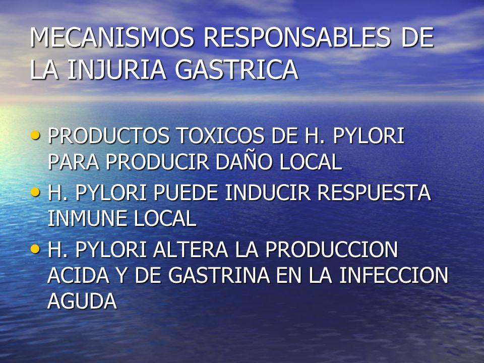 MECANISMOS RESPONSABLES DE LA INJURIA GASTRICA PRODUCTOS TOXICOS DE H. PYLORI PARA PRODUCIR DAÑO LOCAL PRODUCTOS TOXICOS DE H. PYLORI PARA PRODUCIR DA
