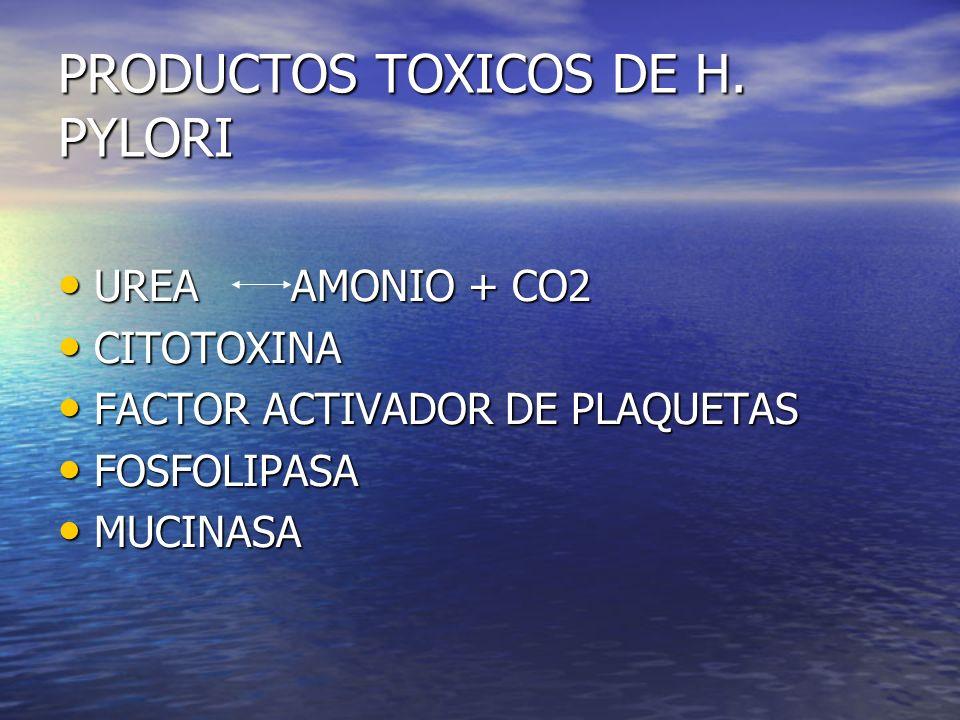PRODUCTOS TOXICOS DE H. PYLORI UREA AMONIO + CO2 UREA AMONIO + CO2 CITOTOXINA CITOTOXINA FACTOR ACTIVADOR DE PLAQUETAS FACTOR ACTIVADOR DE PLAQUETAS F