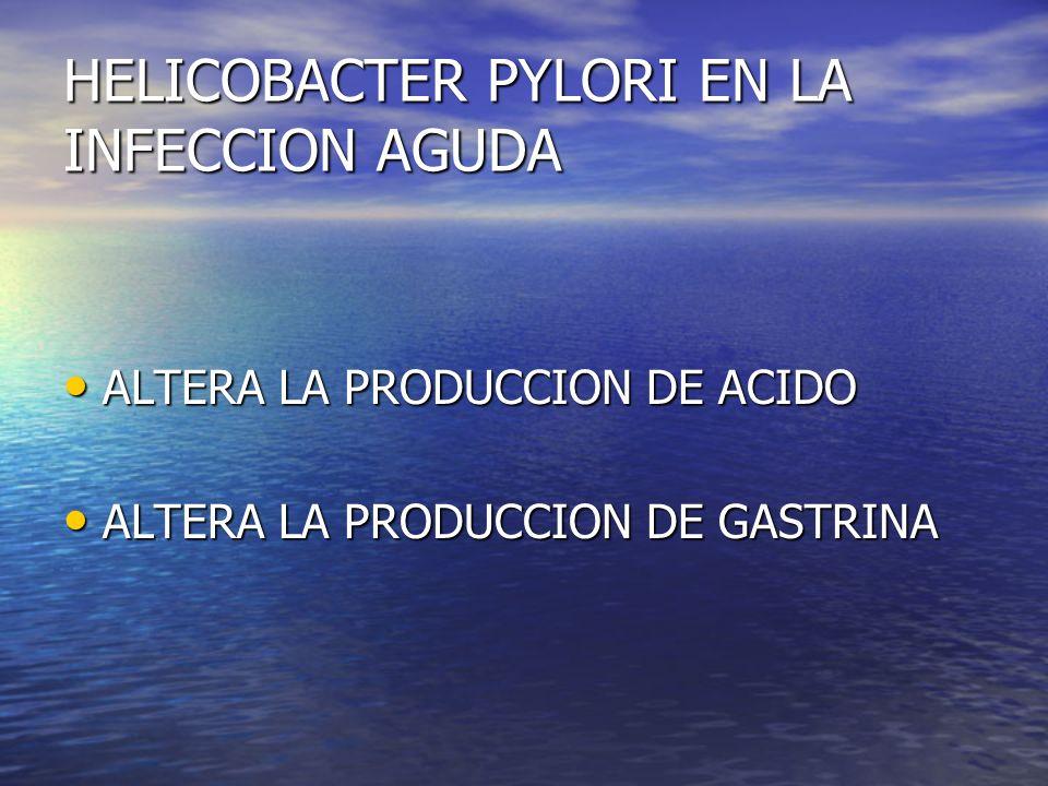 HELICOBACTER PYLORI EN LA INFECCION AGUDA ALTERA LA PRODUCCION DE ACIDO ALTERA LA PRODUCCION DE ACIDO ALTERA LA PRODUCCION DE GASTRINA ALTERA LA PRODU