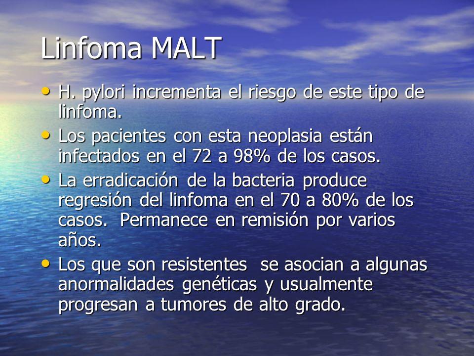 Linfoma MALT H. pylori incrementa el riesgo de este tipo de linfoma. H. pylori incrementa el riesgo de este tipo de linfoma. Los pacientes con esta ne