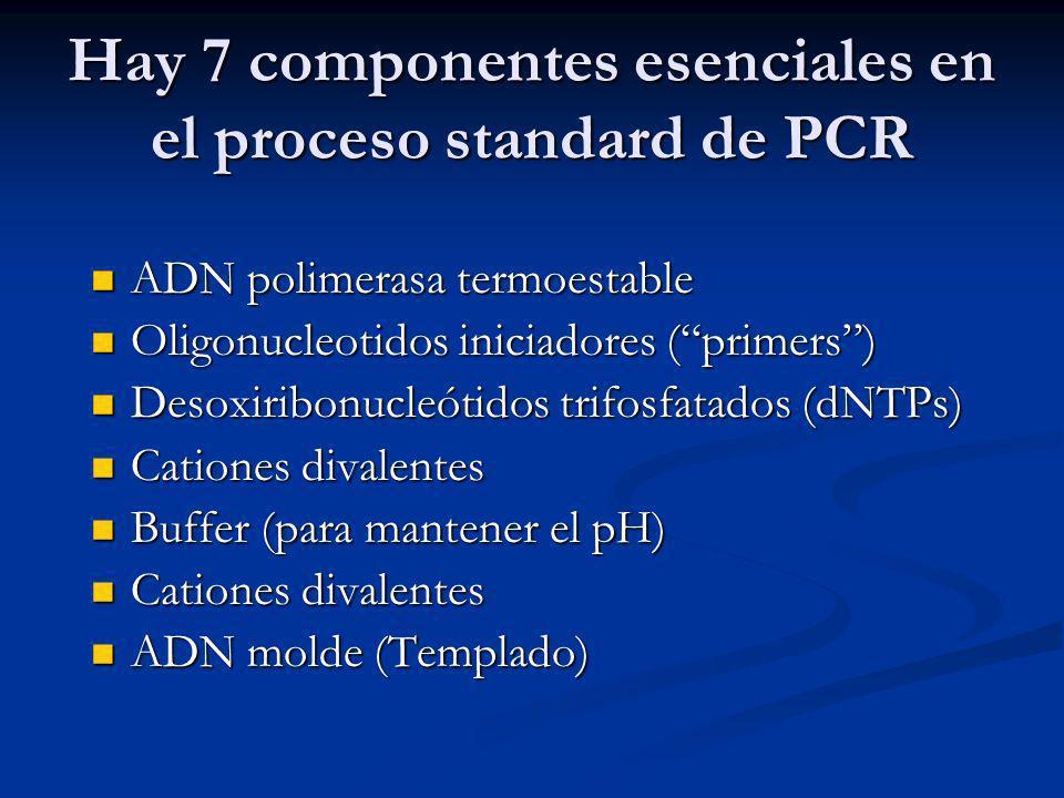 Hay 7 componentes esenciales en el proceso standard de PCR ADN polimerasa termoestable ADN polimerasa termoestable Oligonucleotidos iniciadores (primers) Oligonucleotidos iniciadores (primers) Desoxiribonucleótidos trifosfatados (dNTPs) Desoxiribonucleótidos trifosfatados (dNTPs) Cationes divalentes Cationes divalentes Buffer (para mantener el pH) Buffer (para mantener el pH) Cationes divalentes Cationes divalentes ADN molde (Templado) ADN molde (Templado)