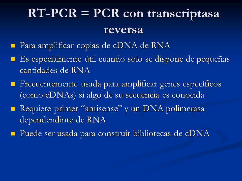 Para amplificar copias de cDNA de RNA Para amplificar copias de cDNA de RNA Es especialmente útil cuando solo se dispone de pequeñas cantidades de RNA Es especialmente útil cuando solo se dispone de pequeñas cantidades de RNA Frecuentemente usada para amplificar genes específicos (como cDNAs) si algo de su secuencia es conocida Frecuentemente usada para amplificar genes específicos (como cDNAs) si algo de su secuencia es conocida Requiere primer antisense y un DNA polimerasa dependendinte de RNA Requiere primer antisense y un DNA polimerasa dependendinte de RNA Puede ser usada para construir bibliotecas de cDNA Puede ser usada para construir bibliotecas de cDNA RT-PCR = PCR con transcriptasa reversa