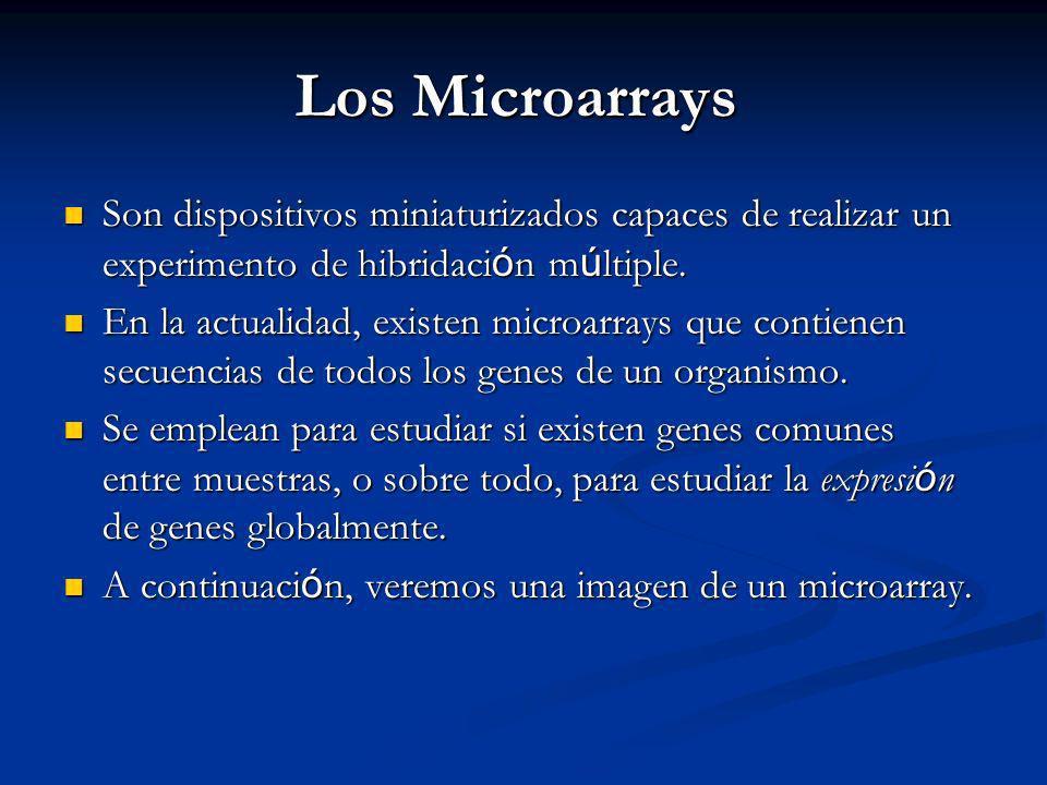 Los Microarrays Son dispositivos miniaturizados capaces de realizar un experimento de hibridaci ó n m ú ltiple.