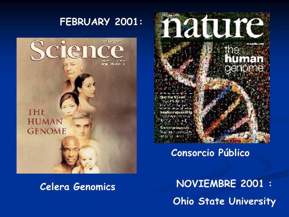 FEBRUARY 2001: Consorcio Público Celera Genomics NOVIEMBRE 2001 : Ohio State University