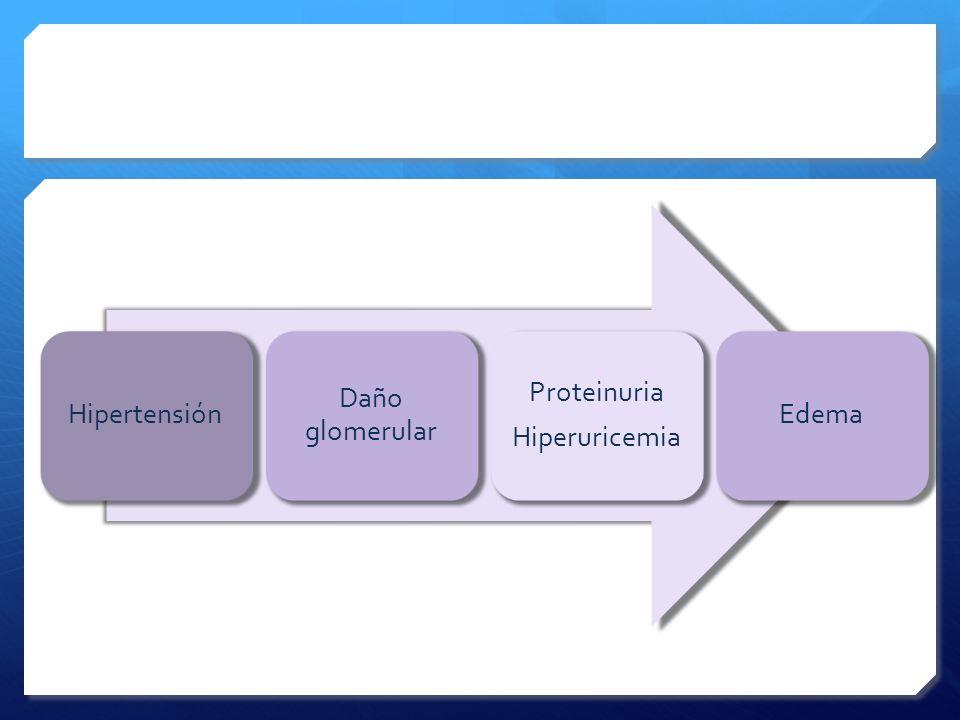 Daño glomerular Proteinuria Hiperuricemia Edema