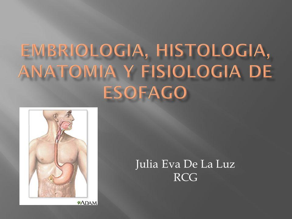 Julia Eva De La Luz RCG