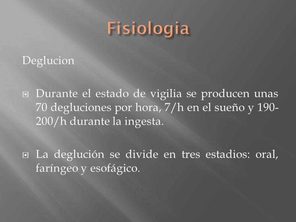 Deglucion Durante el estado de vigilia se producen unas 70 degluciones por hora, 7/h en el sueño y 190- 200/h durante la ingesta. La deglución se divi