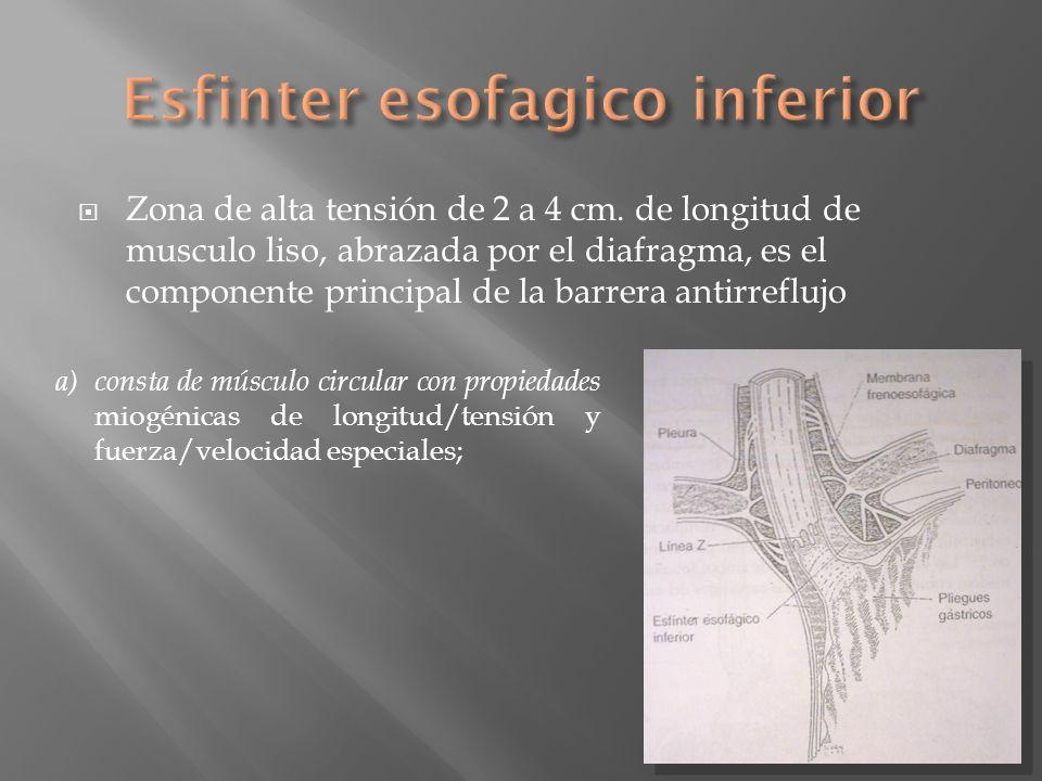 Zona de alta tensión de 2 a 4 cm. de longitud de musculo liso, abrazada por el diafragma, es el componente principal de la barrera antirreflujo a)cons