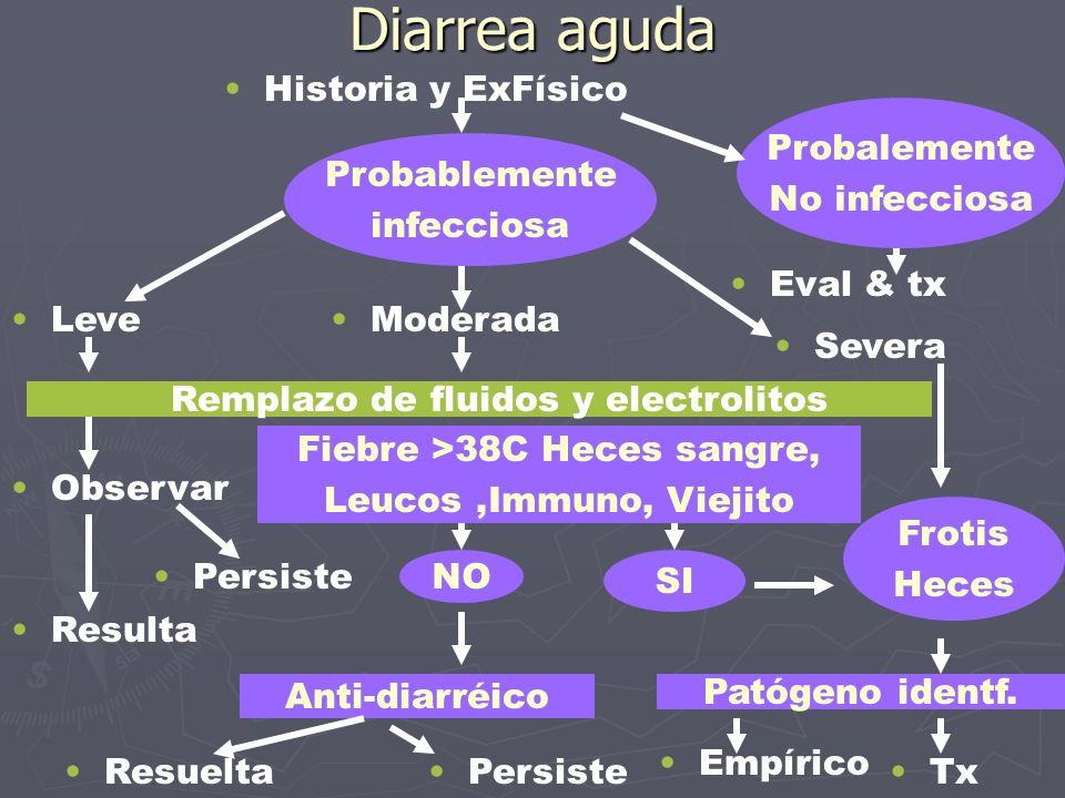 Diarrea aguda Historia y ExFísico Probablemente infecciosa Probalemente No infecciosa Leve Eval & tx Moderada Severa Remplazo de fluidos y electrolito