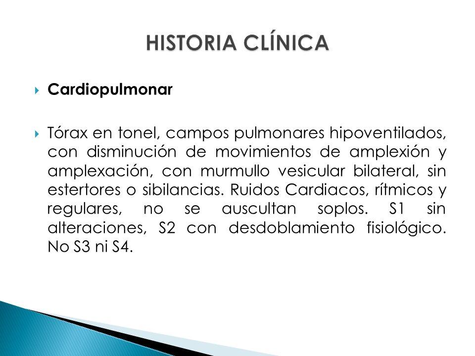 Cardiopulmonar Tórax en tonel, campos pulmonares hipoventilados, con disminución de movimientos de amplexión y amplexación, con murmullo vesicular bilateral, sin estertores o sibilancias.